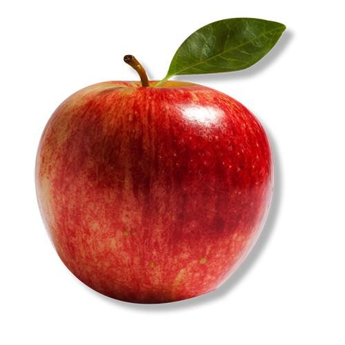 Magnet Rdeče jabolko
